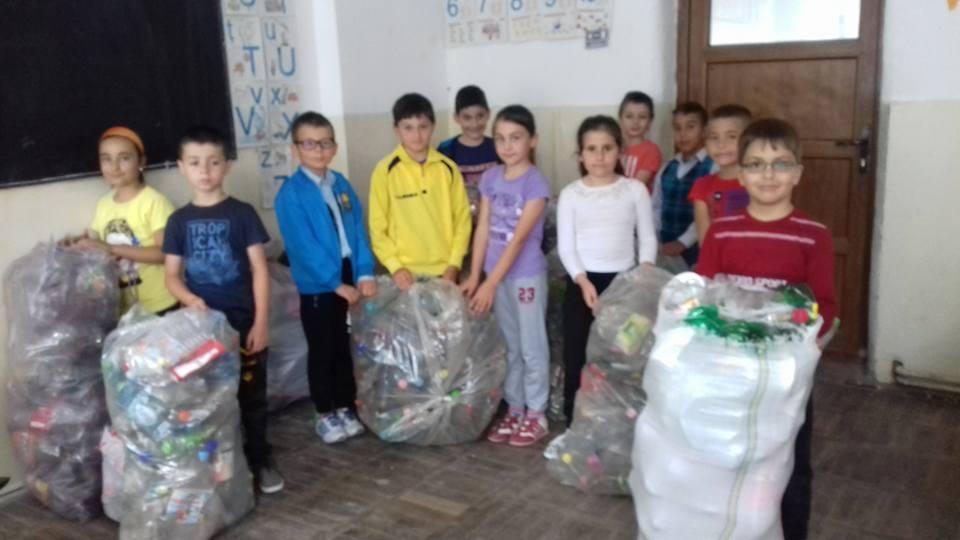 Educația ecologică-exemple de bune practici   EduScoala